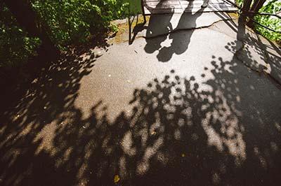 shadows lovers